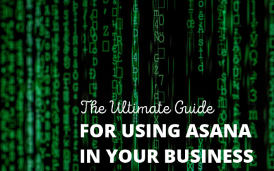 The Ultimate Guide To Using Asana In Your Business