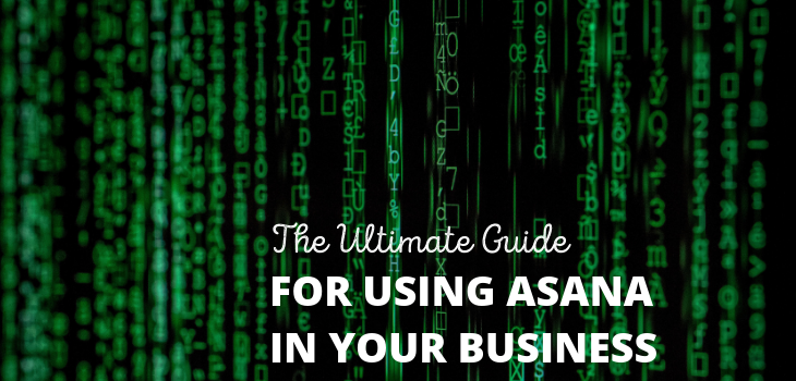 The Ultimate Guide To Using Asana For Your Business